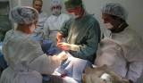 Sterilizzazione questa sconosciuta