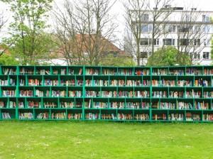 biblioteca-allaperto