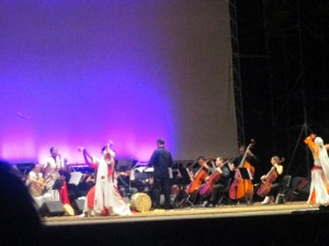 Musica  sinfonica, colori e pizzica sul palco del teatro Arena