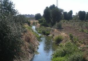 Un tratto del Canale Reale
