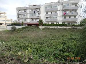 Degrado urbano a pochi passi dal Municipio (3)
