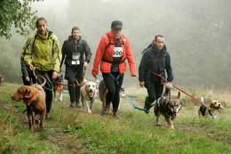 Dog Trekking