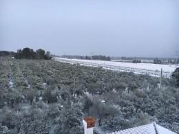 Castellaneta - campagne sotto la neve