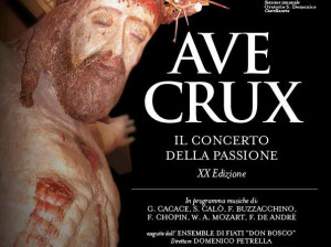 ave-crux-2017sp